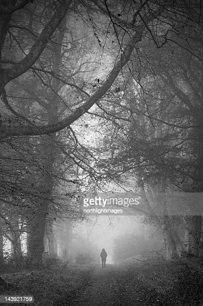 Shadowy image walking in misty wooded road