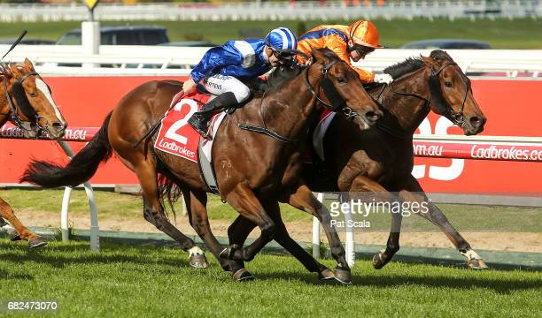 Shaf ridden by Beau Mertens wins the Arvanitis Philanthropy Plate at Caulfield Racecourse on May 13 2017 in Caulfield Australia