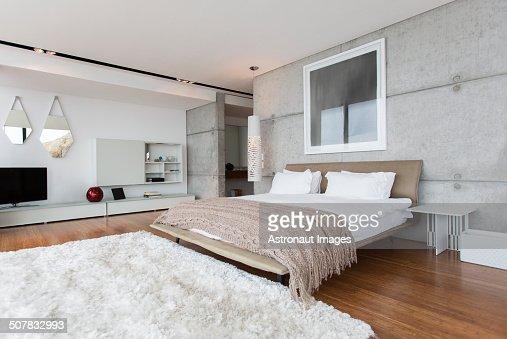 Shag Rug In Modern Bedroom Photo – Modern Bedroom Rugs