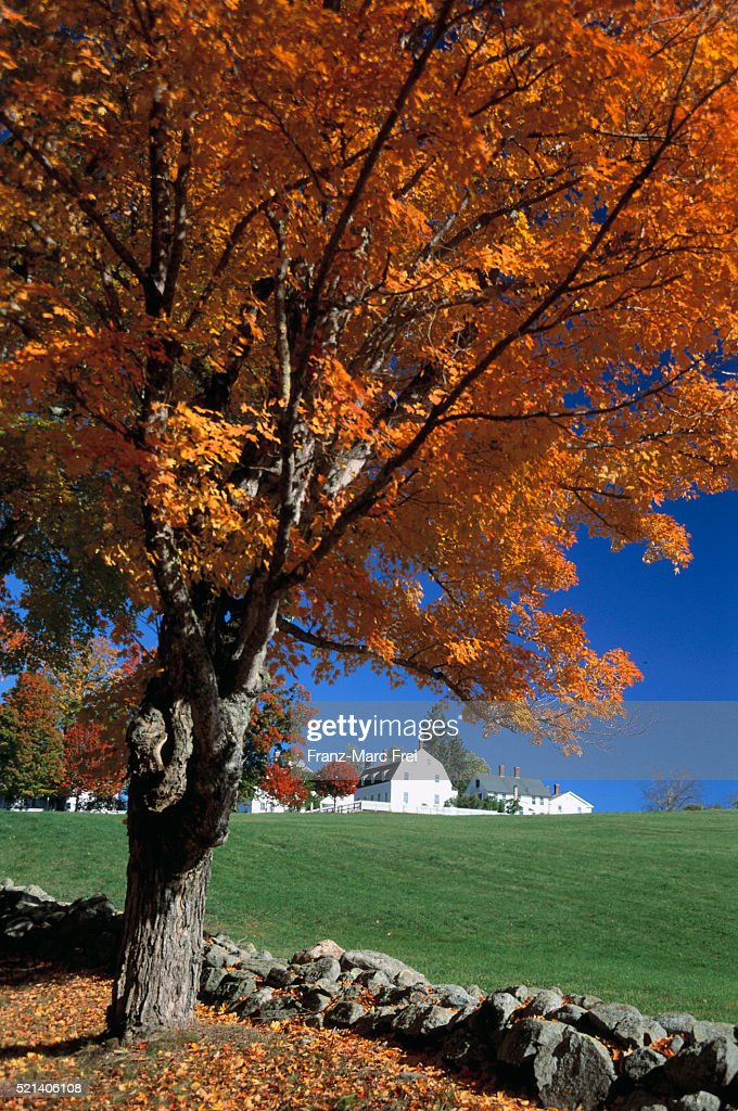 Shaker Village in Autumn