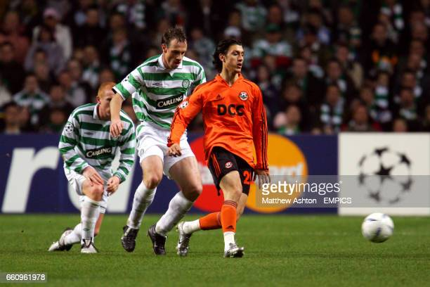 Shakhtar Donetsk's Ciprian Marica plays the ball under pressure from Celtic's Joos Valgaeren