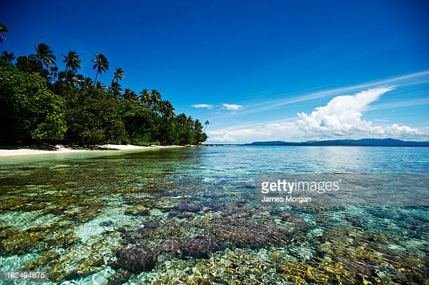 Shallow sea with island shore and sky