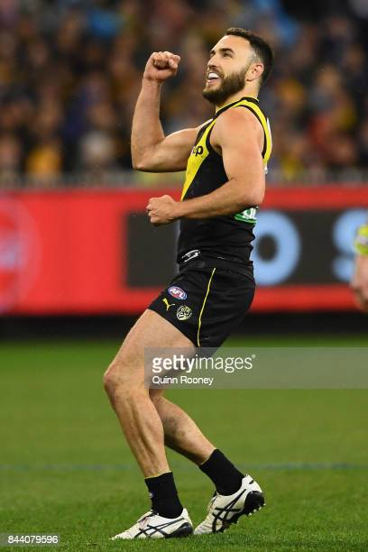 Shane Edwards of the Tigers celebrates kicking a goal during the AFL Second Qualifying Final Match between the Geelong Cats and the Richmond Tigers...