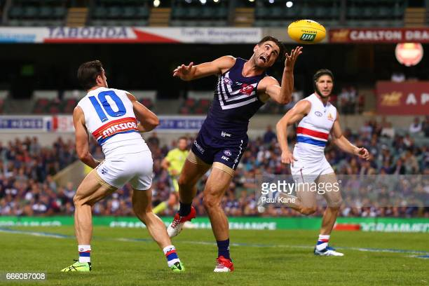 Shane Kersten of the Dockers juggles a mark during the round three AFL match between the Fremantle Dockers and the Western Bulldogs at Domain Stadium...