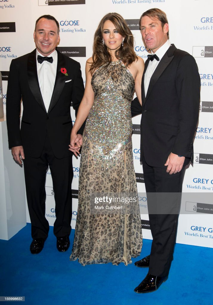 Shane Warne, Elizabeth Hurley and David Furnish attend the Grey Goose Winter Ball at Battersea Power station on November 10, 2012 in London, England.