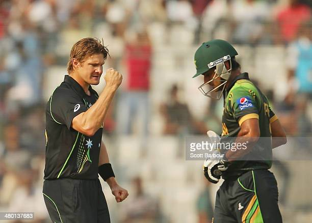 Shane Watson of Australia celebrates after dismissing Mohammad Hafeez of Pakistan during the ICC World Twenty20 Bangladesh 2014 match between...