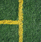 'T' shaped lines on astroturf