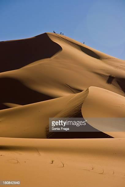 Shapes in desert