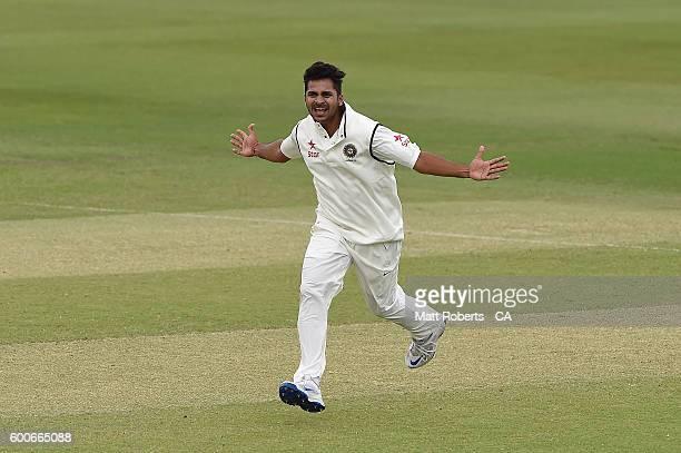 Sharduz Thakur of India A celebrates the wicket of Travis Dean of Australia A during the Cricket Australia Winter Series match between Australia A...