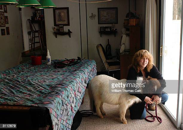 Shari Bernstiel secures a harness on Tonto her guide horse before they go for a walk March 19 2004 in Lansdale Pennsylvania Tonto a miniature horse...
