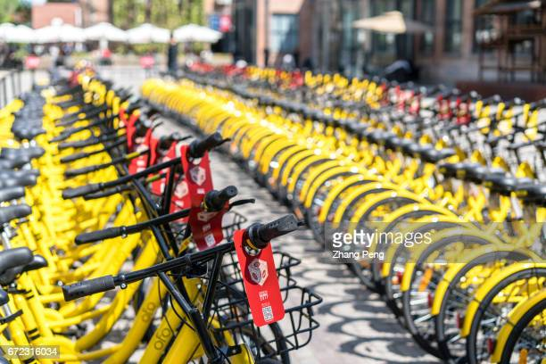 OFO sharing bikes are arranged in rows on a city square With the popularity of sharing bikes destroy and misplacing of bikes become new problems for...