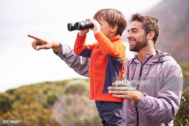 In der Natur mit seinem kleinen Jungen