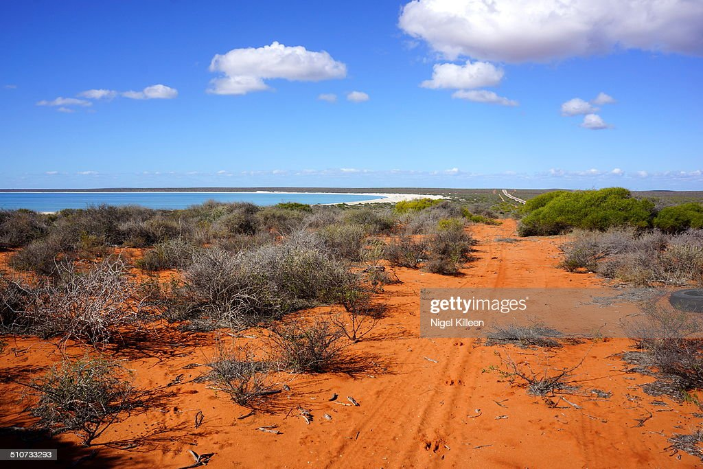 Shark Bay and outback scenery