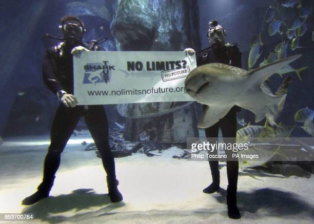 Shark Trust patron and wildlife TV presenter Steve Backshall with safety diver swimming with sharks to launch the Shark Trust No Limits campaign at...