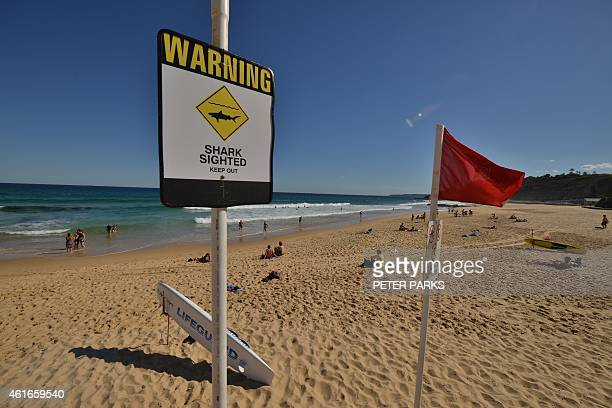 Shark warning signs are seen posted on the beach in the northern New South Wales city of Newcastle on January 17 2015 Australian surfers and swimmers...