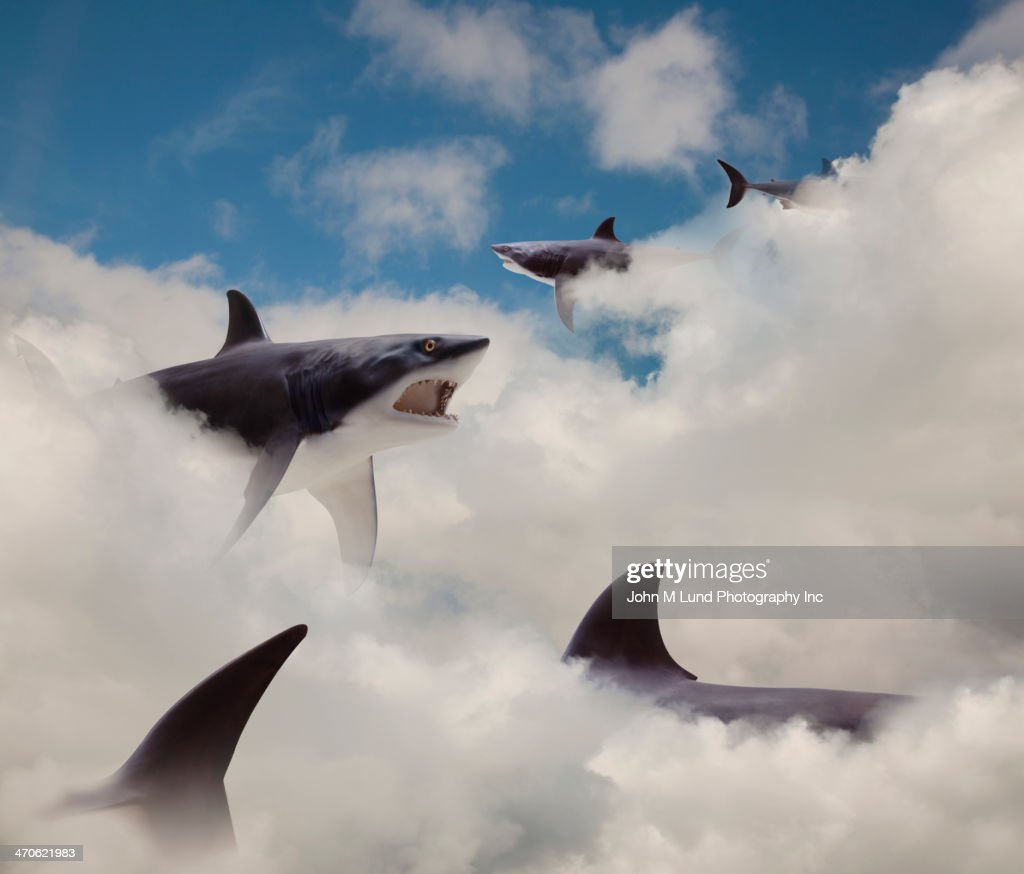 Sharks floating in clouds : Stock Photo