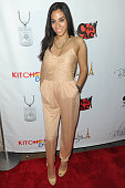 Sharon Carpenter attends the 'Chef Roble Co' Season 2 Premiere Party at Studio XXI on June 5 2013 in New York City