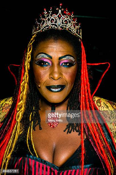 Sharon D Clarke playing 'Wicked Queen Talulah' poses for a portrait during the Puss in Boots pantomime at the Hackney Empire on December 6 2013 in...