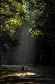 Sharon Slavinski left and Maureen Britt right walk along Lee Drive at the Fredericksburg and Spotsylvania County Battlefields Memorial National...