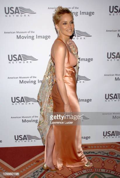 Sharon Stone during 19th Annual American Museum of the Moving Image Benefit Salute to Richard Gere Arrivals at WaldorfAstoria in New York City New...