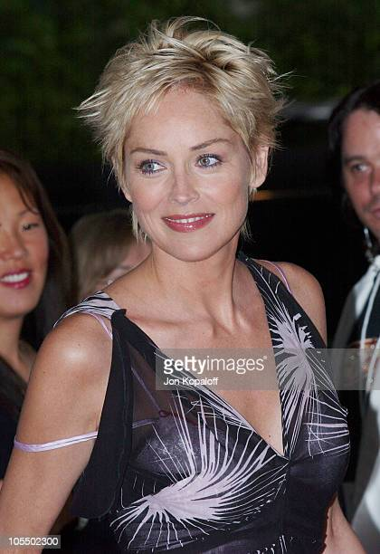 Sharon Stone during 2004 Crest Whitestrips Style Awards Arrivals at The Beverly Hills Hotel in Beverly Hills California United States