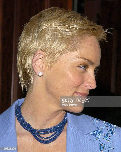 Sharon Stone during 51st Annual Boomtown Party at Century Plaza Hotel in Century City California United States