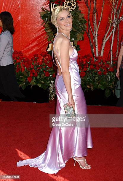 Sharon Stone during The 56th Annual Primetime Emmy Awards Arrivals at The Shrine Auditorium in Los Angeles California United States