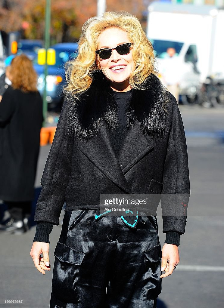 Sharon Stone is seen in the West Village at Streets of Manhattan on November 26, 2012 in New York City.