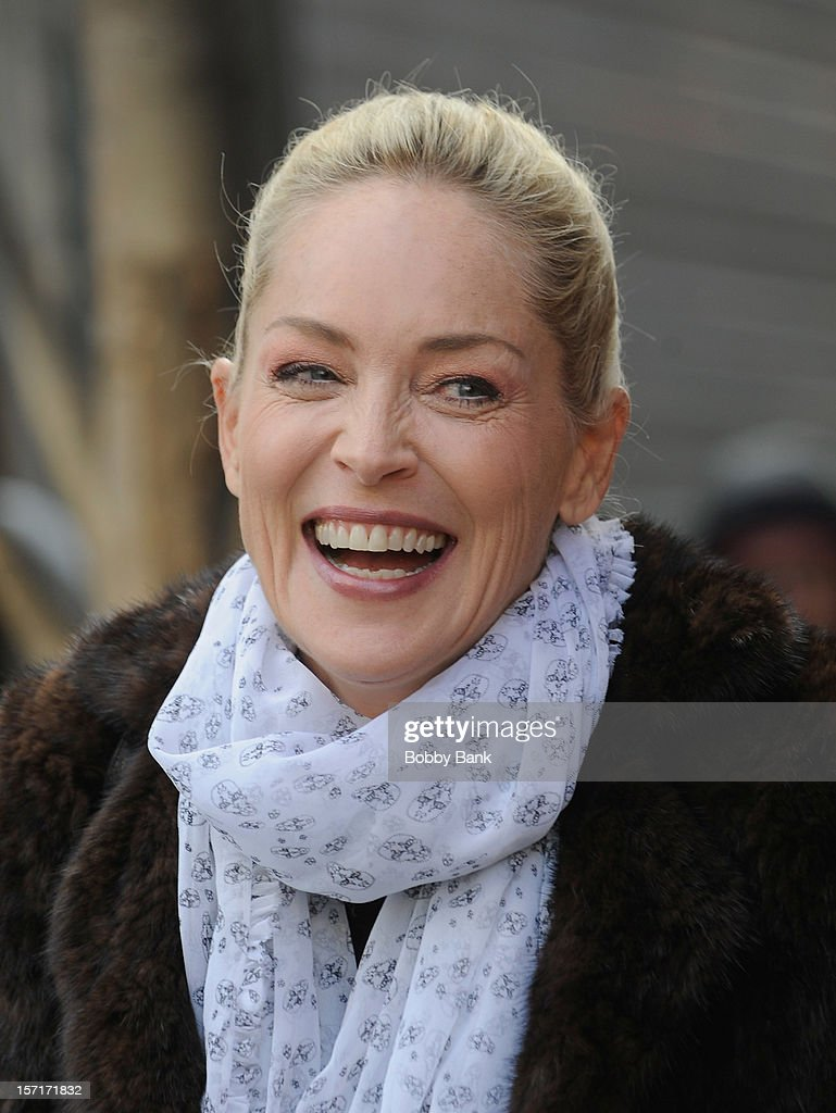 Sharon Stone on location for 'Fading Gigolo' on November 29, 2012 in New York City.