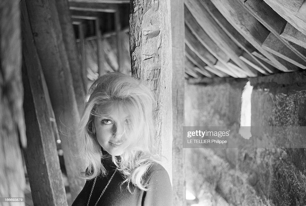 Sharon Tate Getty Images