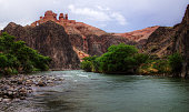 Sharyn river oasis and Charyn Canyon around it