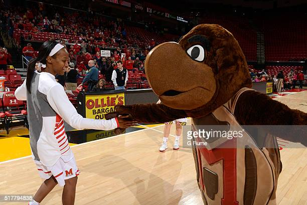 Shatori WalkerKimbrough of the Maryland Terrapins is introduced before the game against the Wisconsin Badgers at the Xfinity Center on February 25...