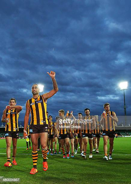 Shaun Burgoyne and teamates of the Hawks celebrate his the win with fans during the round one AFL match between the Hawthorn Hawks and the Brisbane...
