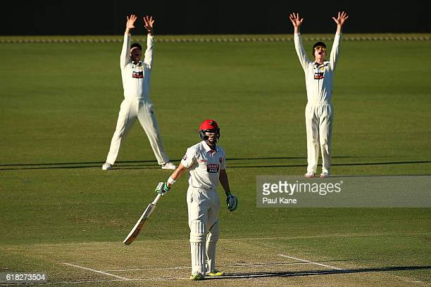 Shaun Marsh and Cameron Bancroft of the Warriors appeal unsuccessfully for the wicket of Jake Lehmann of the Redbacks during day two of the Sheffield...