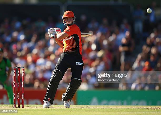 Shaun Marsh of the Scorchers bats during the Big Bash League Semi Final match between the Perth Scorchers and the Melbourne Stars at WACA on January...