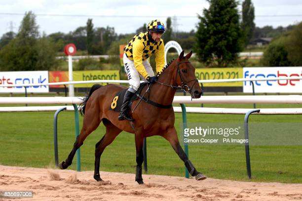 Shaver Baines ridden by Andrew Thornton goes to post