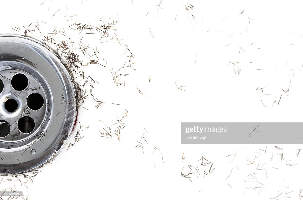 Shavings in Sink : Stock Photo