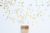 'SHE CAN' printed on wood dice against white background with gold stars.
