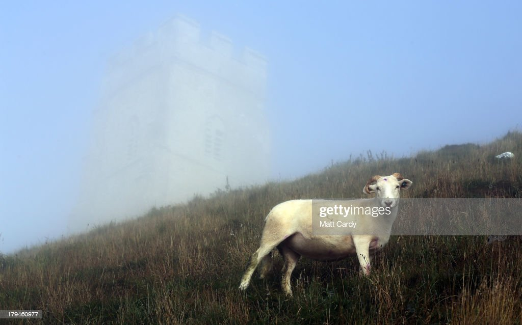 Sheep graze beside the 14th-century St. Michael's Tower, on Glastonbury Tor as the sun rises and begins to clear the early morning mist and fog near the town of Glastonbury on September 4, 2013 in Somerset, England. Parts of the UK are set to enjoy a late summer heatwave today, with temperatures possibly reaching 28C in central, eastern and southern England, with temperatures predicted to climb even higher tomorrow.