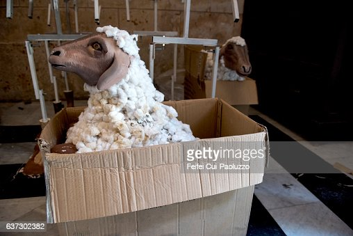 A sheep in a carton at Vieja Havana of Cuba