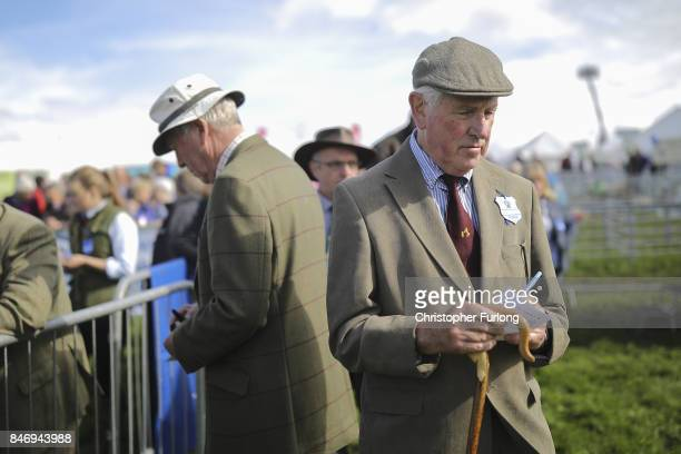 Sheep Judges mark their cards during the Westmorland County Show on September 14 2017 in Milnthorpe England The Westmorland County Show is showcases...