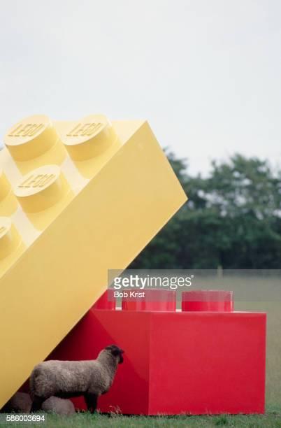 Sheep Standing Next to Large Legos