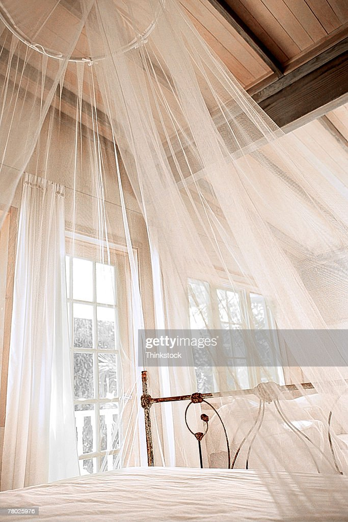 best a sheer white canopy hanging over a bed stock photo getty images with bed  veil.