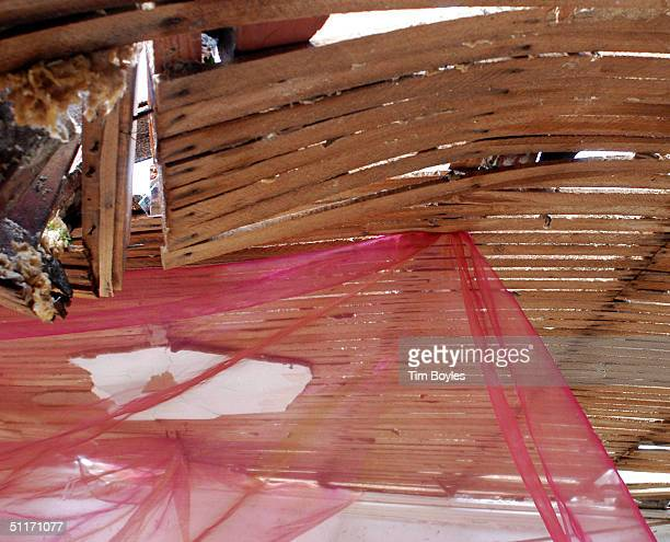 A sheer window curtain hangs from what's left of the roof of a home after being blown by the winds of Hurricane Charley August 14 2004 in Punta Gorda...