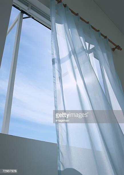 Sheer window panel and window