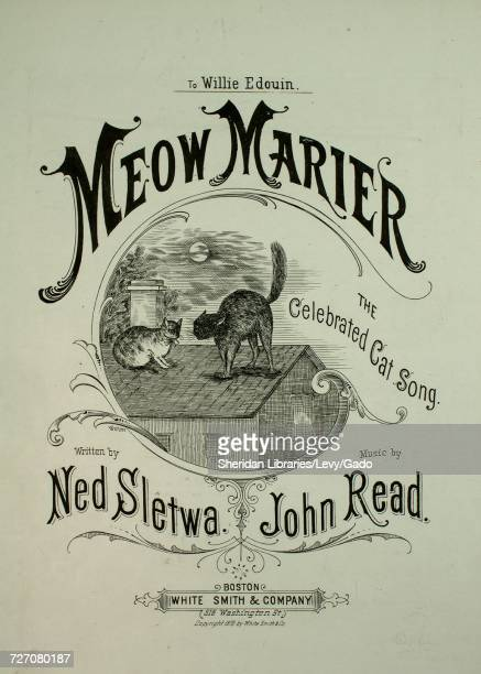 Sheet music cover image of the song 'meow Marier The Celebrated Cat Song' with original authorship notes reading 'Written by Ned Sletwa Music by John...