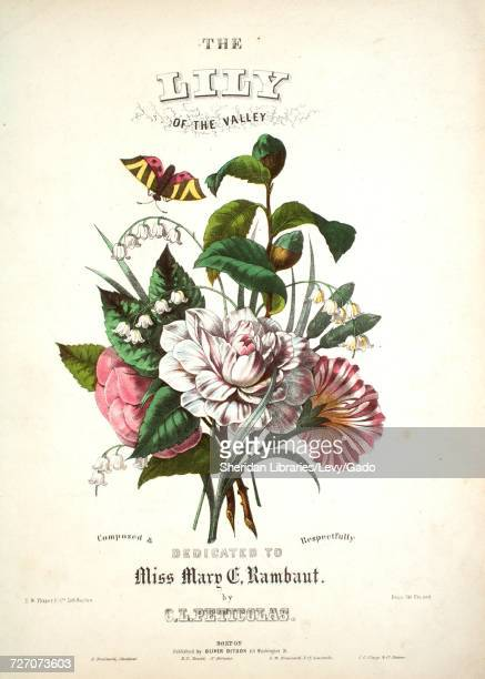 Sheet music cover image of the song 'the Lily of the Valley' with original authorship notes reading 'By CL Peticolas' United States 1900 The...