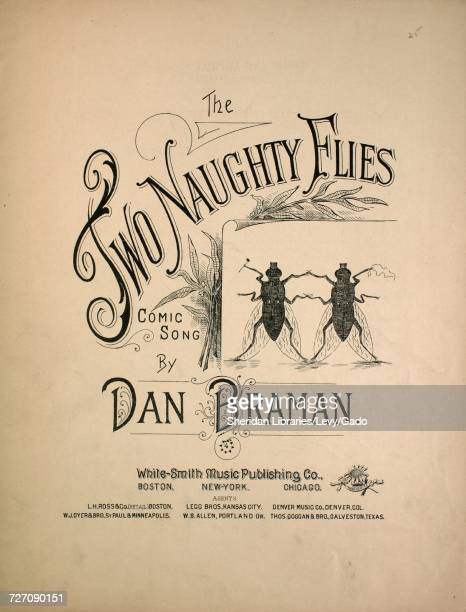Sheet music cover image of the song 'the Two Naughty Flies Comic Song' with original authorship notes reading 'Words by Howard Willis Music by Dan...