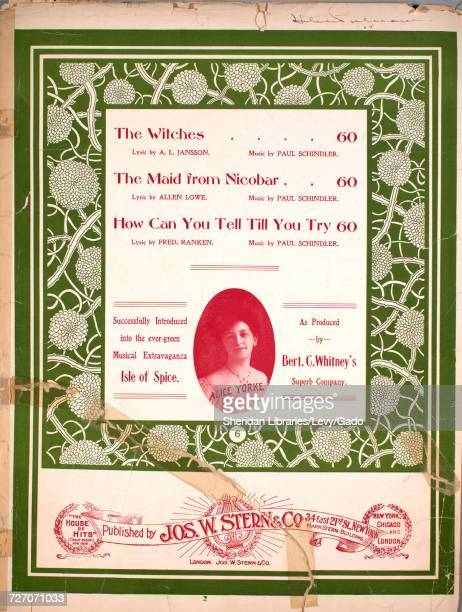 Sheet music cover image of the song 'the Witches' with original authorship notes reading 'Lyrics by AL Jansson Music by Paul Schindler' United States...