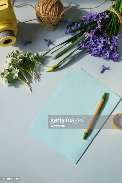 Sheet of papers, camera and spring flowers on light blue background